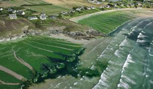 Les nitrates et l'eau en Bretagne