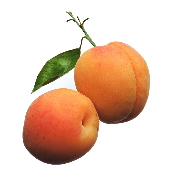 L Abricot Un Fruit Tr 232 S Pris 233 Observatoire Des Aliments