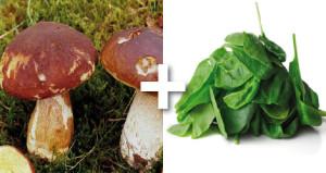 recette végétale