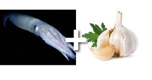 calamars ail persil