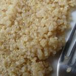 Quinoa et cuisine