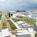 jardins toits Paris