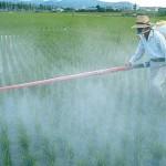 Le Roundup, un herbicide inoffensif