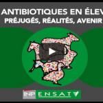 Colloque antibiotiques le 11 février 2016