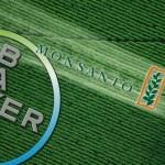 Bayer Monsanto, une menace pour l'environnement