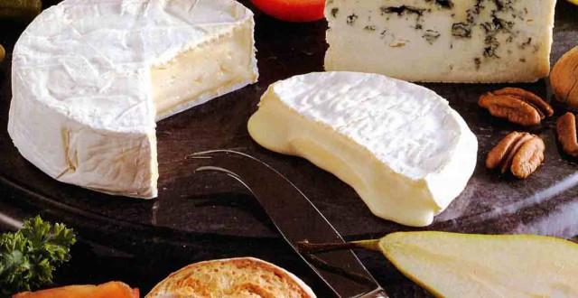 Quand le cerveau en fait tout un fromage